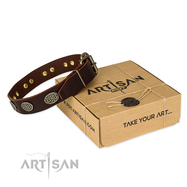 Fine quality natural genuine leather dog collar for everyday walking