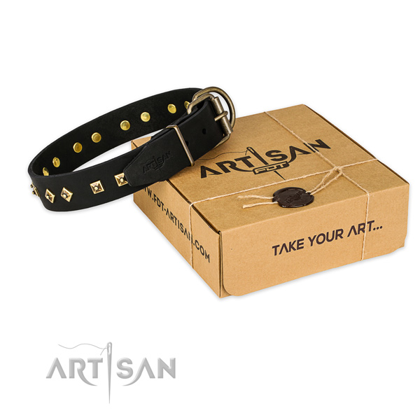 Designer full grain leather dog collar for daily use