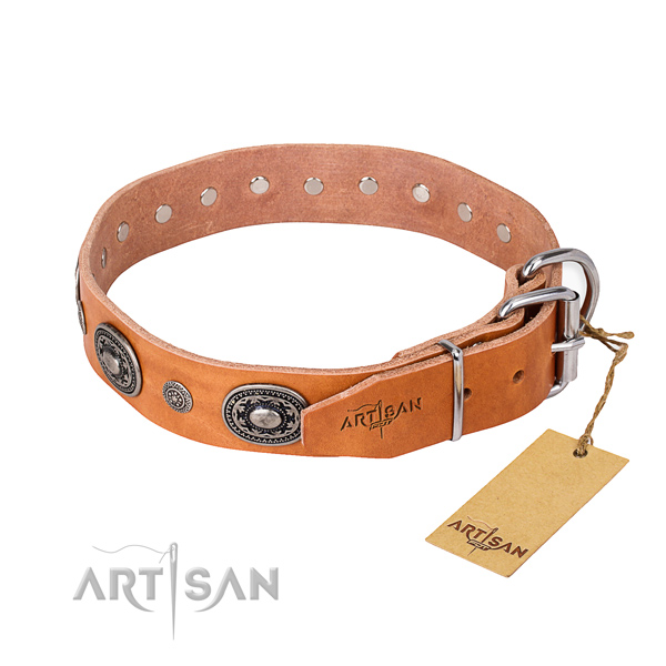 Awesome leather collar for your stunning dog