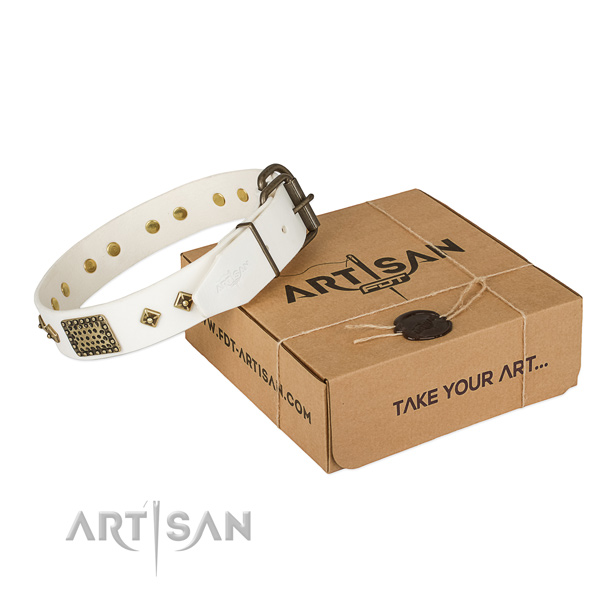 Stylish full grain leather dog collar for daily walking