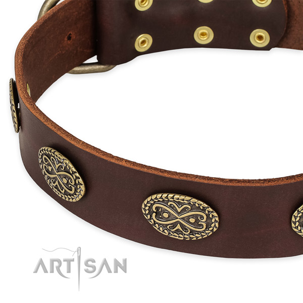 Easy to use leather dog collar with resistant non-rusting set of hardware
