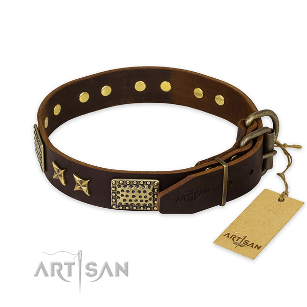 Incredible design adornments on full grain natural leather dog collar
