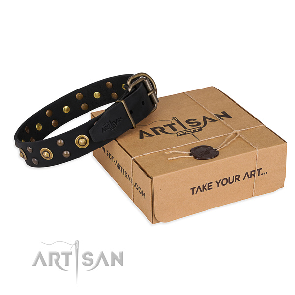 Best quality leather dog collar for daily walking
