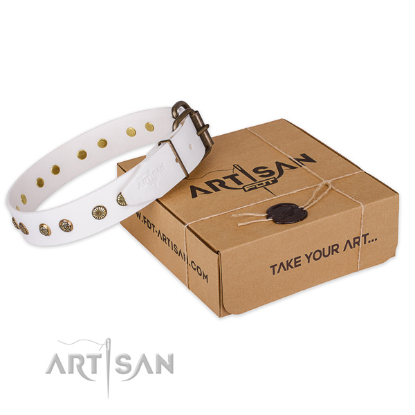Stylish design leather dog collar for everyday use
