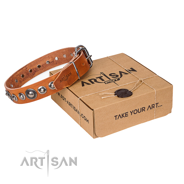 Fine quality genuine leather dog collar for stylish walks