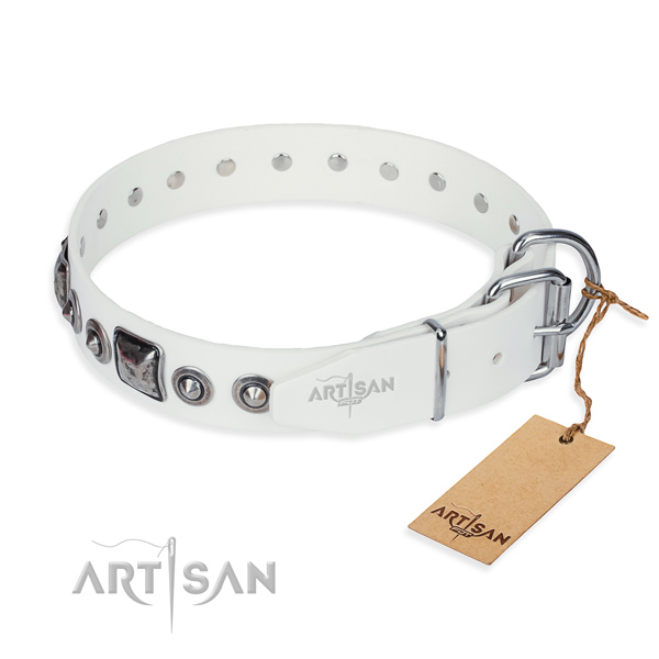 Everyday leather collar for your noble dog
