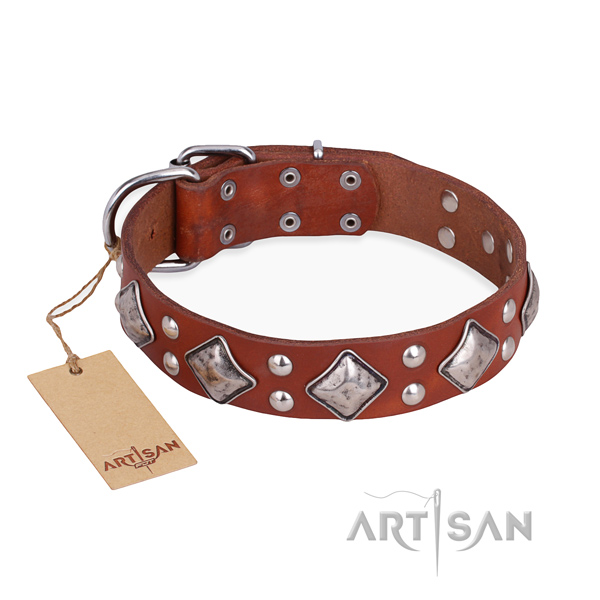 Significant design adornments on full grain natural leather dog collar