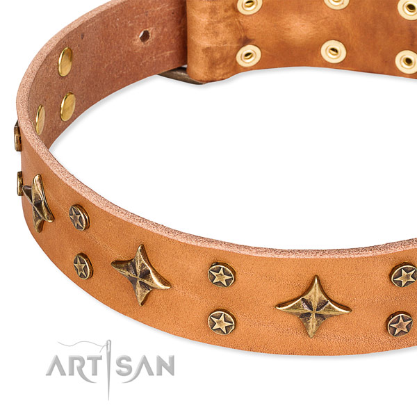 Easy to put on/off leather dog collar with resistant rust-proof fittings