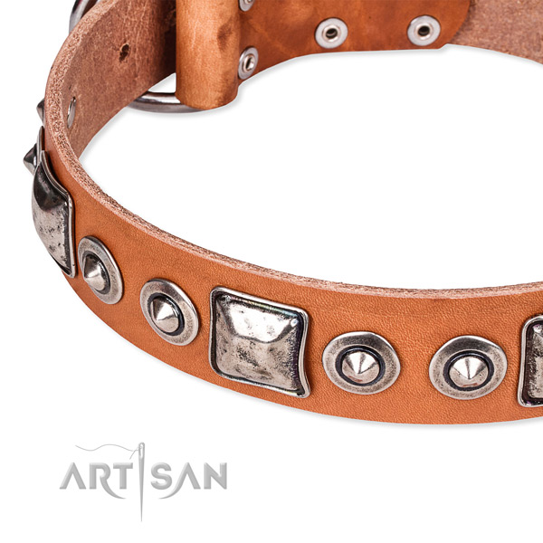 Adjustable leather dog collar with extra strong rust-proof buckle