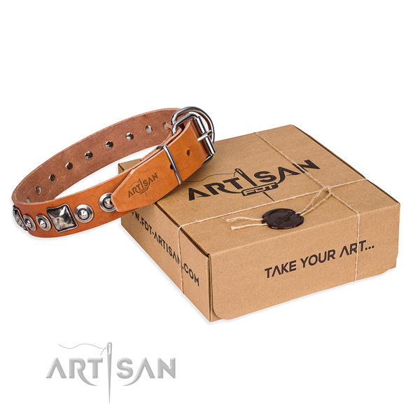 Awesome leather dog collar for everyday use