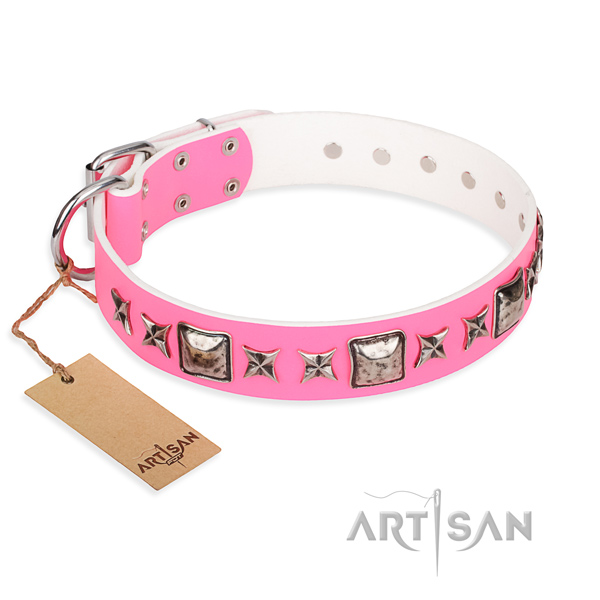 Functional leather collar for your gorgeous four-legged friend