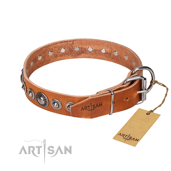 Fashionable leather collar for your elegant canine
