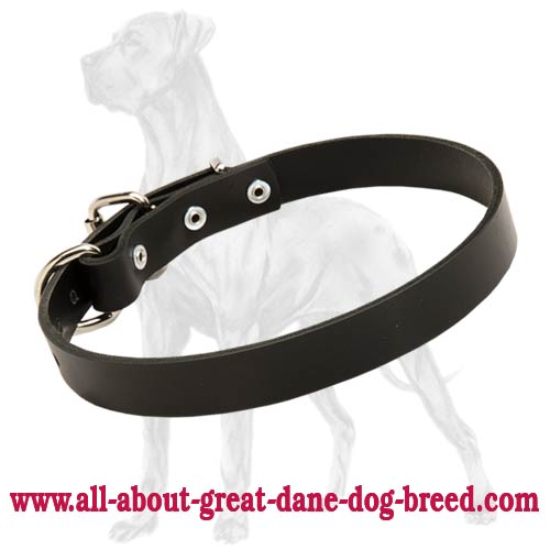 Non-Toxic Leather Great Dane Collar