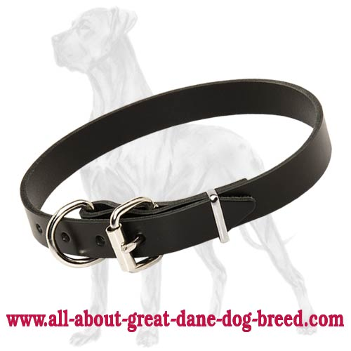 Strong Leather Great Dane Collar