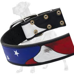 Painted Leather Dog Collar