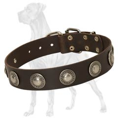 Durable Leather Collar