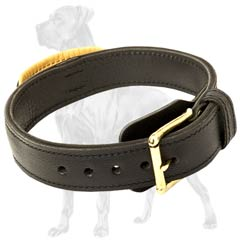 Great-Dane-Breed-Leather-Collar-With-Handle-Agitation
