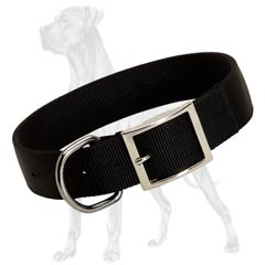 Non-Toxic Nylon Dog Collar