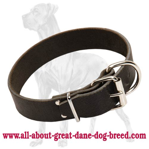 Great Dane Wide Leather Collar Rustroof