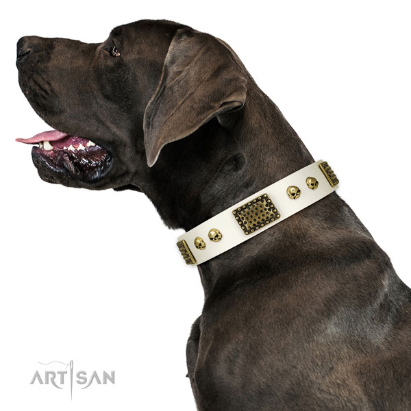 Corrosion proof buckle on full grain genuine leather dog collar for comfy wearing