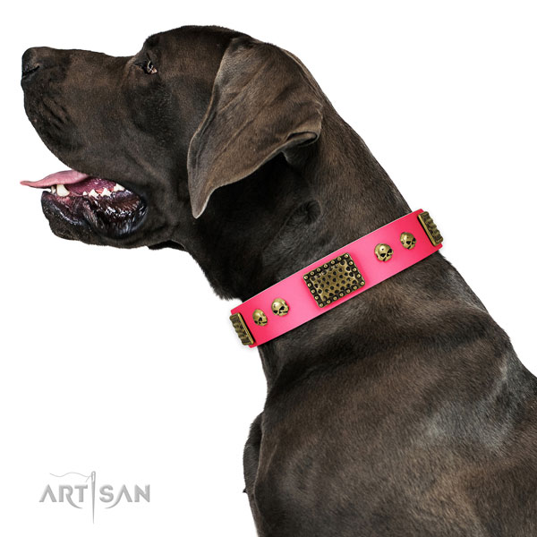 Corrosion proof buckle on full grain natural leather dog collar for fancy walking