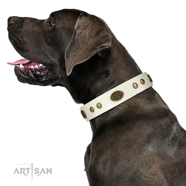 Strong D-ring on leather dog collar for comfortable wearing
