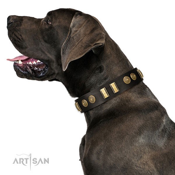 Strong hardware on genuine leather dog collar for fancy walking