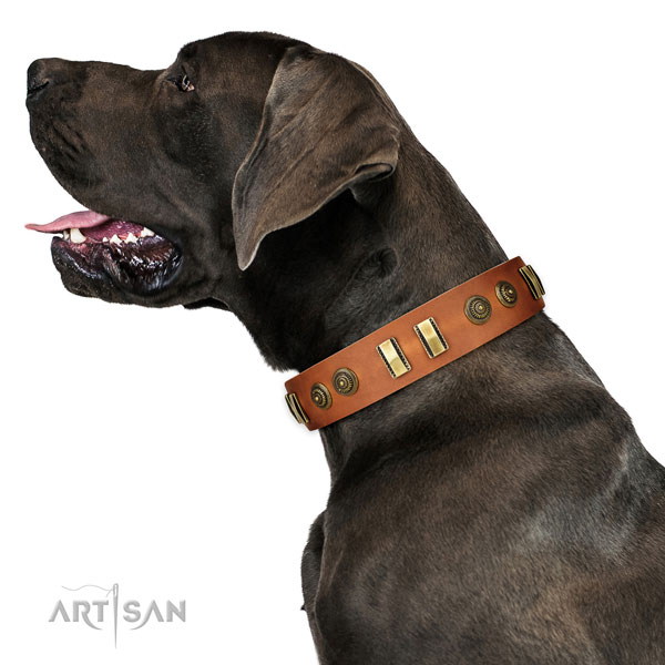 Durable D-ring on full grain natural leather dog collar for everyday walking
