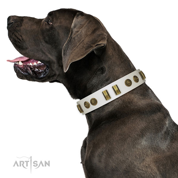 Rust resistant fittings on leather dog collar for everyday use