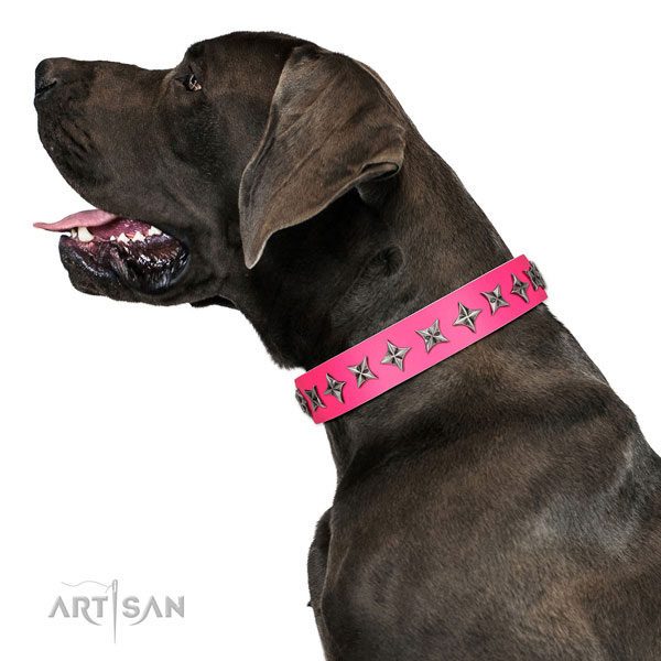 Quality full grain natural leather dog collar with unusual decorations