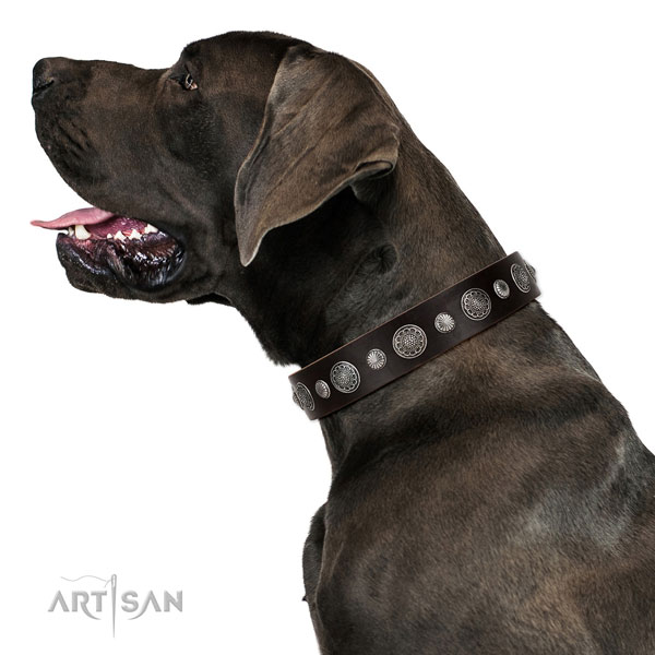 Genuine leather collar with corrosion resistant D-ring for your lovely doggie