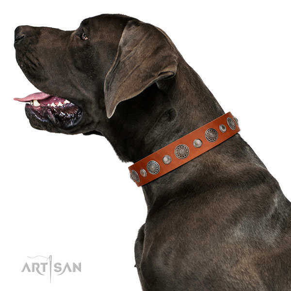 Convenient leather dog collar with rust resistant traditional buckle