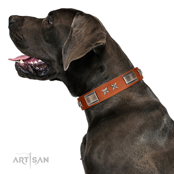 Easy wearing high quality genuine leather dog collar with adornments
