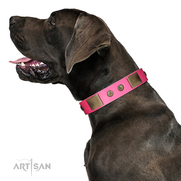 Rust resispinkt D-ring on genuine leather dog collar for handy use