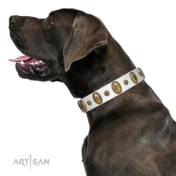 Easy wearing flexible full grain natural leather dog collar with decorations
