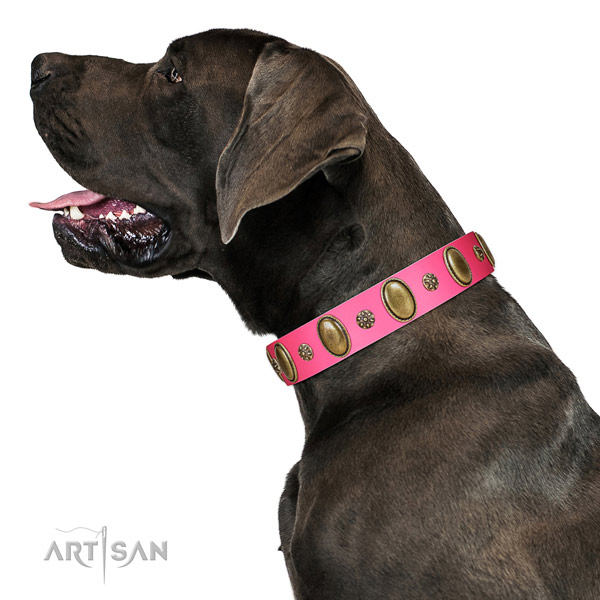 Comfy wearing soft to touch full grain genuine leather dog collar with studs