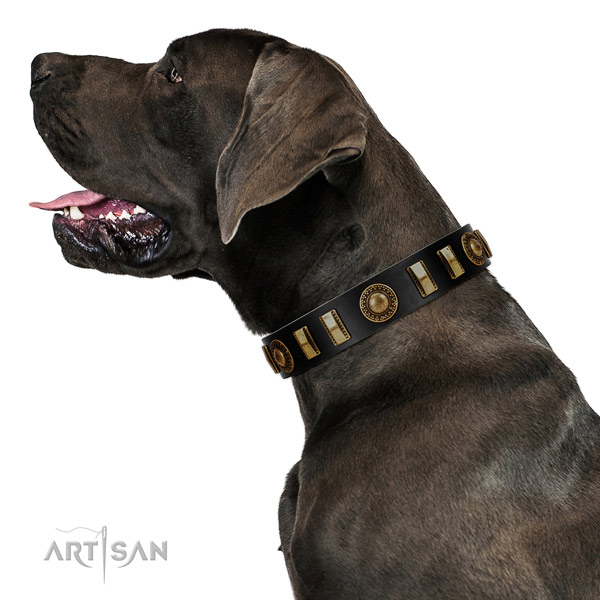Gentle to touch full grain natural leather dog collar with durable traditional buckle