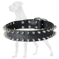 Great Dane collar of dog-friendly material