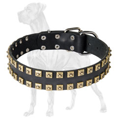 Studded Leather Great Dane Collar with rustproof Hardware