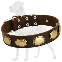 Vintage Decorated Dog Collar