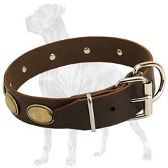 Rust Resistant Leather Dog Collar