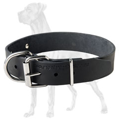 Hypo-allergic Leather Great Dane Collar