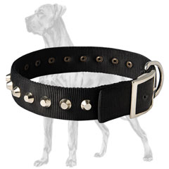 Durable Nylon Dog Collar