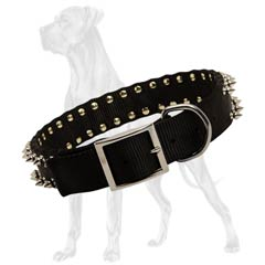Exclusive Nylon Dog Collar with 2 Rows of Spikes
