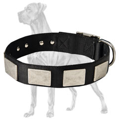 Durable Nylon Great Dane Collar with Plates