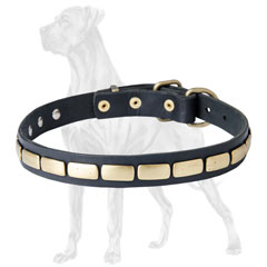 Non-Toxic Great Dane Plated Leather Collar