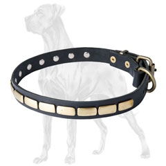 Great Dane Plated Leather Collar Handcrafted