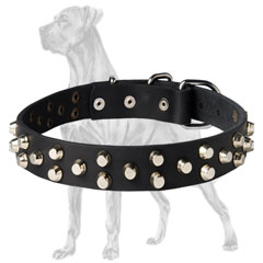 Great Dane Studded Leather Collar Non-Toxic Cover