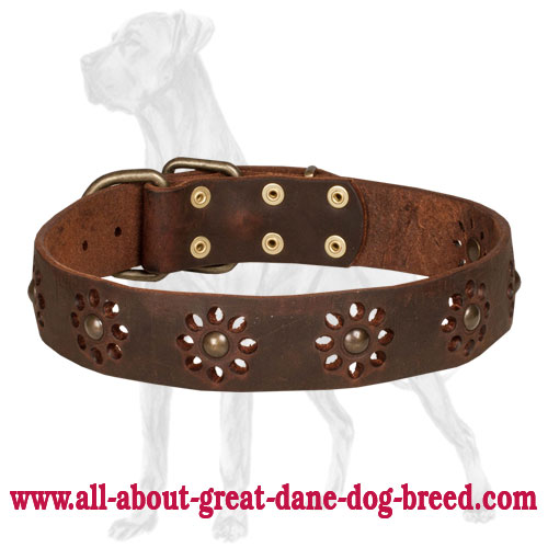 Great Dane collar with flower decoration