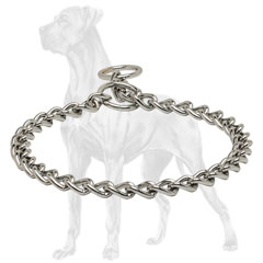 Chrome Great Dane choke collar for behavior correction